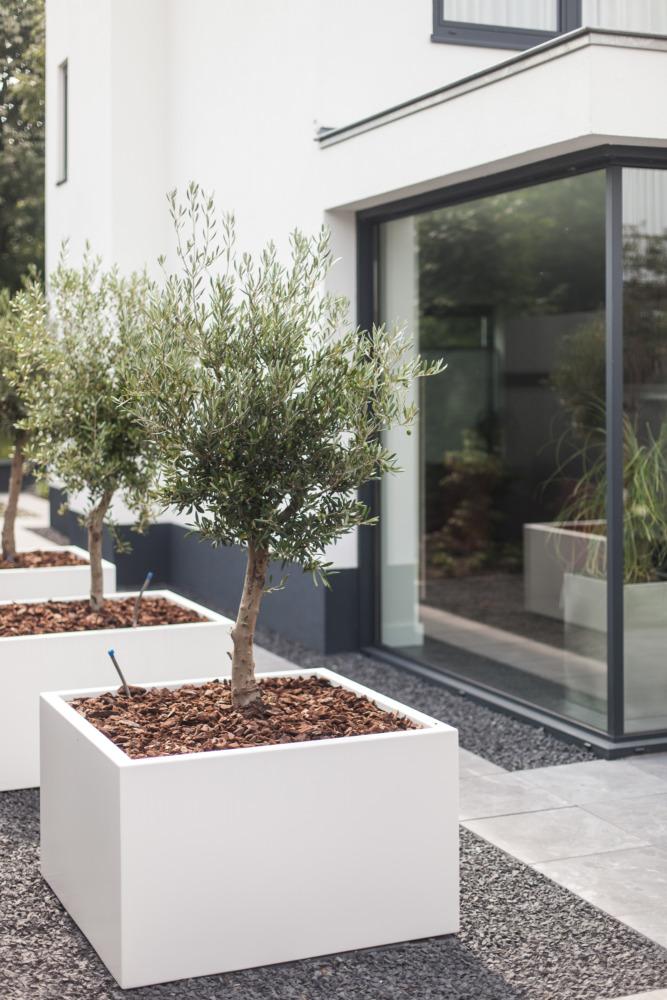 villa Nijmegen wijchen renovatie woonhuis tot villa
